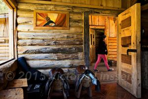 Mapuche House