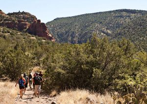 Wet Beaver Creak Trail Sedona AZ_by Victoria Linssen001.jpg