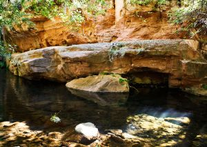 Wet Beaver Creak Trail Sedona AZ_by Victoria Linssen021.jpg