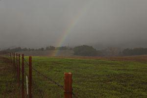 Rainbow in Ojai